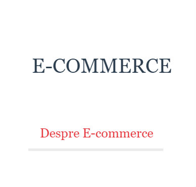 curs e-commerce